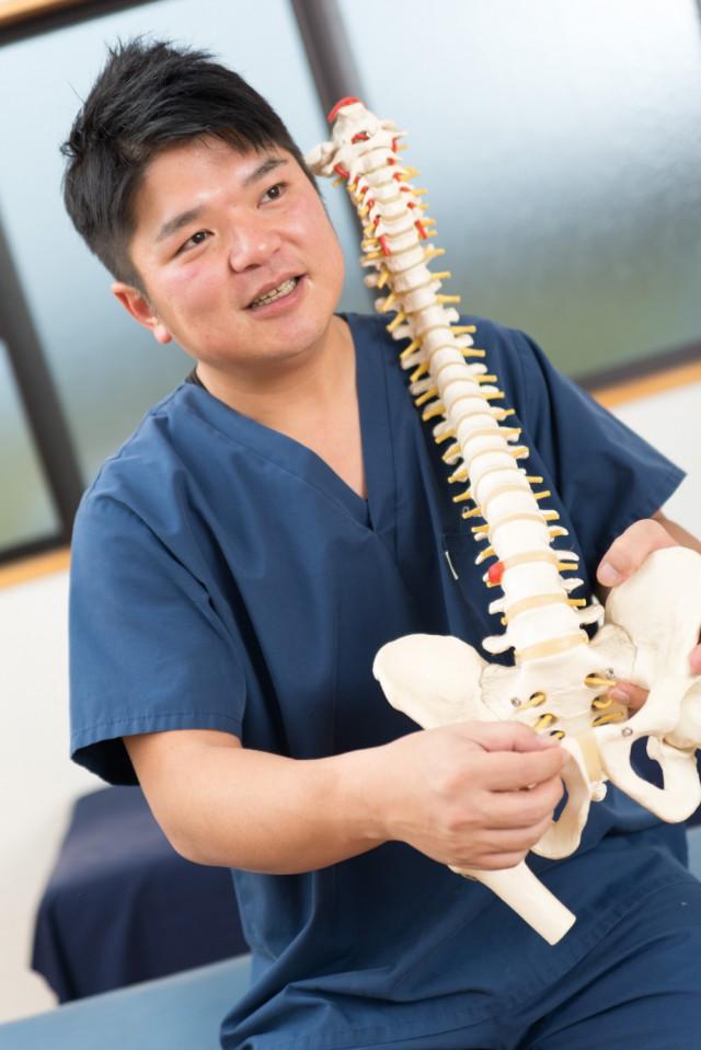 背骨の説明